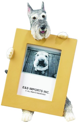 Schnauzer Picture Frame Holds Your Favorite 2.5 by 3.5 Inch Photo, Hand Painted Realistic Looking Schnauzer Stands 6 Inches Tall Holding Beautifully Crafted Frame, Unique and Special Schnauzer Gifts for Schnauzer Owners