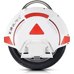 IPS Bluetooth 16 pollici 30 kmh 340wh & App Elettrico scooter monociclo auto-bilanciamento - Elettrico scooter monociclo auto-bilanciamento ad una ruota con luce LED