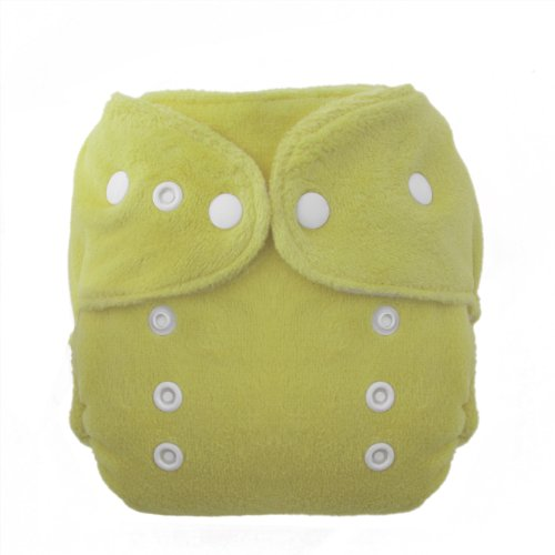 Thirsties Duo Fab Fitted Snap Cloth Diapers - 1