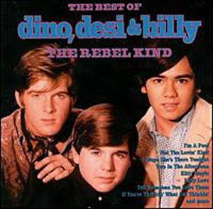 Rebel Kind: The Best of Dino, Desi & Billy