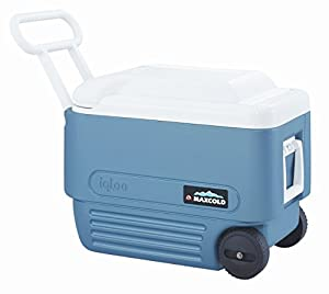 Igloo 13023 Maxcold Ice Chest, Wheeled, Ice Blue & White, 40-Qts. - Quantity 2 Cooler - Ice Chest, To 60 Qt.