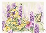 Lanarte Butterfly Bush and Echinacea Aida