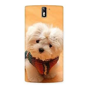 Ajay Enterprises Elite Cute Pozdia Back Case Cover for One Plus One