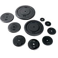 CAP Barbell Standard 1-Inch Cast Iron Weight Plate, Single