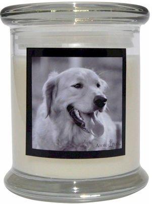 Aroma Paws 316 Breed Candle 12 Oz. Jar - Golden Retriever