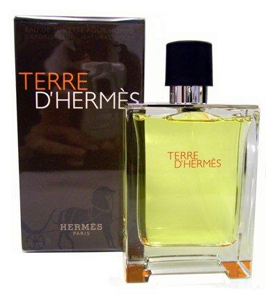 terre-d-hermes-100ml-edt-spray-fragrance-for-men