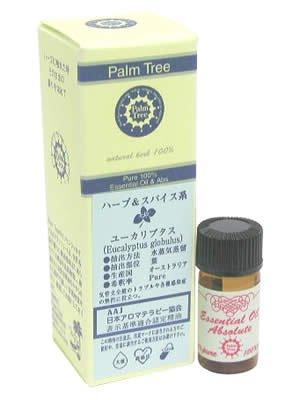 Palm Tree ユーカリプタス 5ml