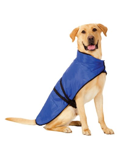 Fashion Pet Blanket Coat for Dogs, Essential Blue, X-Large