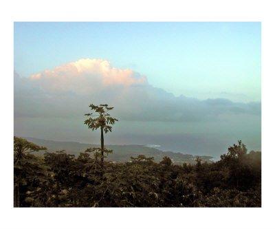 Sunrise Captain Cook Hawaii