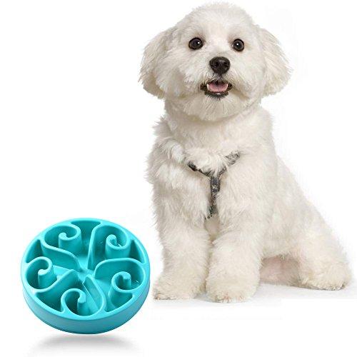 Splink Plastica Cani/Gatti Ciotola antiscivolo Animali Vassoio Evitare di Animale da Mangiare Troppo e Rimpinzarsi, Ciotola anti ingozzamento,Anti Ingozzamento,slow food