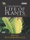 David Attenborough - The Private Life of Plants [DVD] [1995]