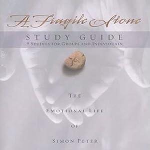 A Fragile Stone Audiobook