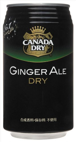 canada-dry-ginger-ale-350ml-cans-24-pieces-2-box-set