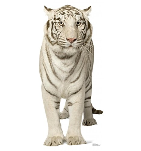 White Tiger Cardboard Cutout