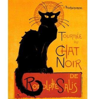 x cat noir