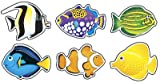36 x Tropical Fish Picture Display Cards (mini)