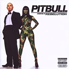 Nayer, Pitbull, Bass Ill Euro Full of S**T cover