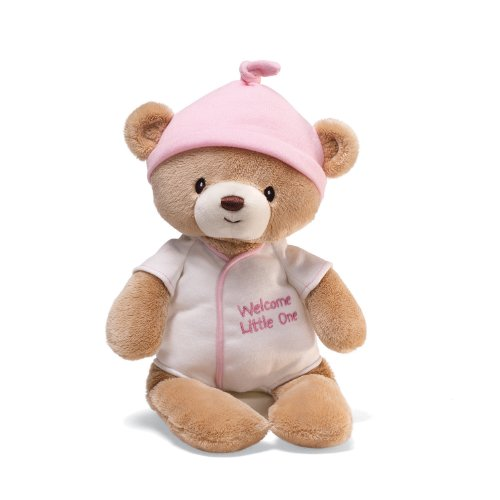 41XVG0le9aL Cheap Price Gund Welcome Little One Bear in One 12 Plush