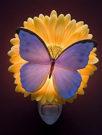 Gerbera Daisy Night Light