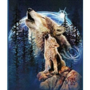 Wolf Bedding Shop Everything Log Homes