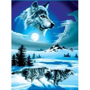 Super Soft Running Wolves Wolf Blanket Queen Size front-823639