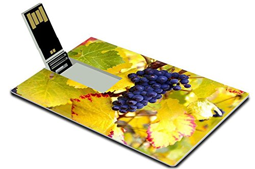 Liili 32GB USB Flash Drive 2.0 Memory Stick Credit Card Size IMAGE ID: 5964515 Dry Brush Pinot Noir Grapes (Mac 249 Brush compare prices)