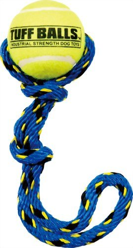 Petsport Fling Thing (Colors May Vary)