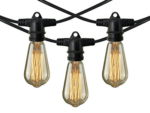 Decorative Patio Style Outdoor or Indoor Lighting - 48 Foot Weatherproof Commercial Grade Black String Lights with Edison Bulbs - Nostalgic, Vintage, Party, Lawn, Garden, Wedding, Holiday Decorations (Clear Bulb Seal compare prices)