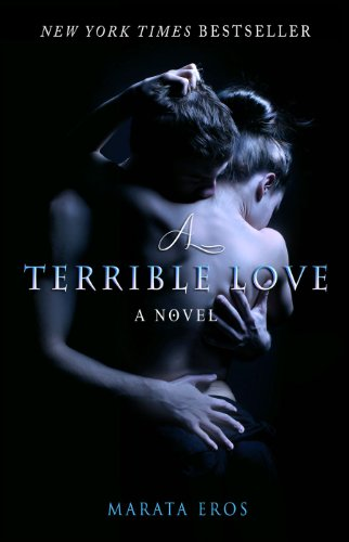 A Terrible Love ebook