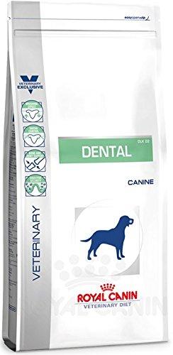 Bild: Royal Canin  Dog dental 1er Pack 1 x 14 kg