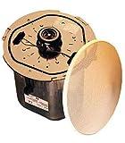Toa Speaker - F-2352C