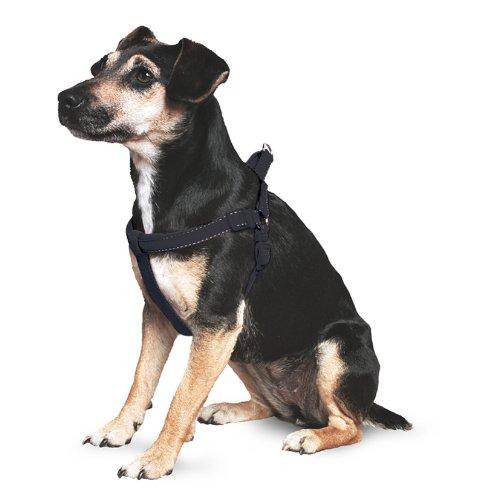 Artikelbild: Nylon reflektierend Hundegeschirr, gepolstert