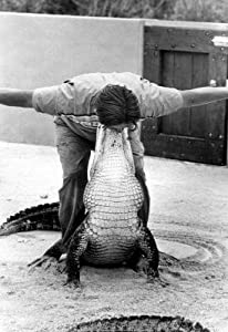 (13x19) Alligator Wrestler Archival Photo Poster