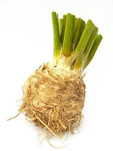 Celery Root - Avg 12 Lb Case