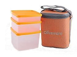 Oliveware New Lunch Bag Set of 3 (LB50 orange)