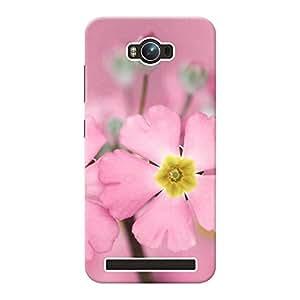 Mobile Back Cover For Asus Zenfone Max ZC550KL (Printed Designer Case)