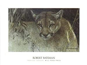 Tropical Cougar Art Print Art Poster Print by Robert Bateman, 24x18