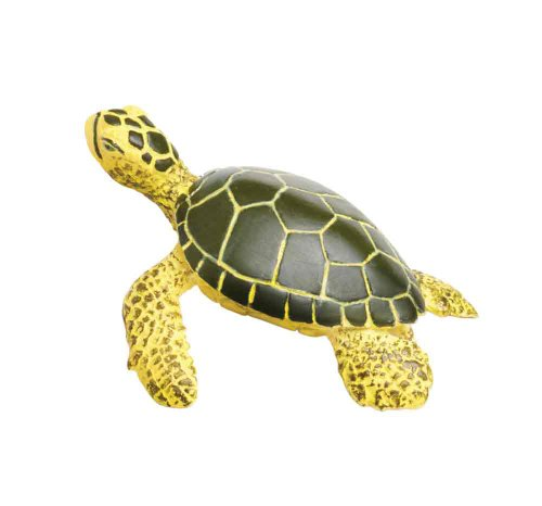 Safari Ltd Wild Safari Sea Life Green Sea Life Turtle Baby