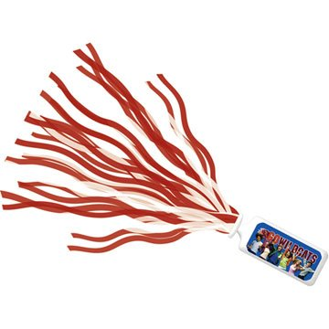 High School Musical Cheerleader Pom Poms Accessory