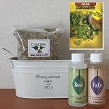 コリアンダーの栽培セット/豊作セット(液体肥料付き)プランターホワイト仕様