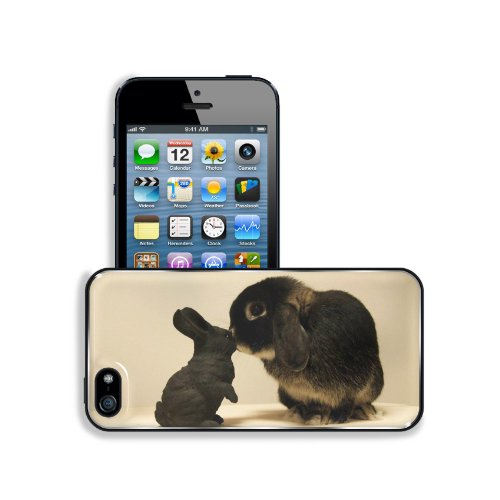 Rabbit White Black Brindle Baby Animal Apple Iphone 5 / 5S Snap Cover Premium Aluminium Design Back Plate Case Customized Made To Order Support Ready 5 Inch (126Mm) X 2 3/8 Inch (61Mm) X 3/8 Inch (10Mm) Liil Iphone_5 5S Professional Metal Case Touch Acces front-944380