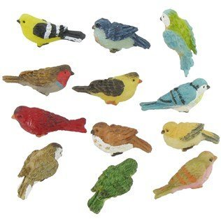 miniature-birds