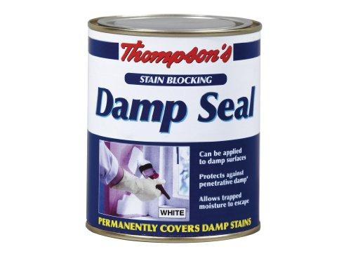 tds250-250ml-thompsons-damp-seal