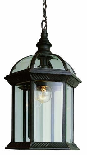 Trans Globe Lighting 4183 BC 1-Light Outdoor Hanging Lantern, Black Copper, 14-Inch Height