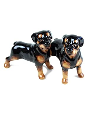 Rottweiler Handmade Salt and Pepper Shaker