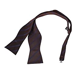 DBA7A02C Brown Holidays Gift Stripes Self-tied Bowtie Economics Family Microfiber Whole Sale Stain Self Tie Bow Tie By Dan Smith