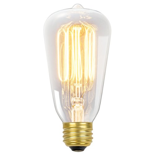 Globe Electric 01321 60-watt S60 Antique Style Squirrel Cage Incandescent Medium Base Light Bulb