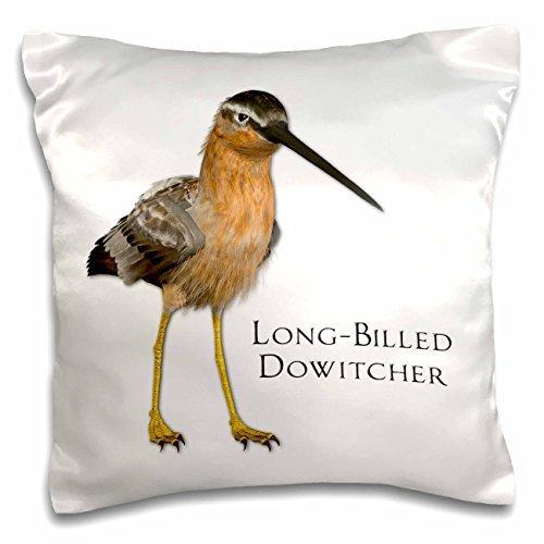Graphics Bird - Long-Billed Dowitcher Shorebird - 16x16 inch Pillow Case