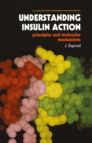 Understanding Insulin Action: Principles and Molecular Mechanisms (Ettore Majorana International Science Series)