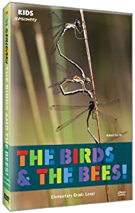 Kids @ Discovery: The Birds & the Bees